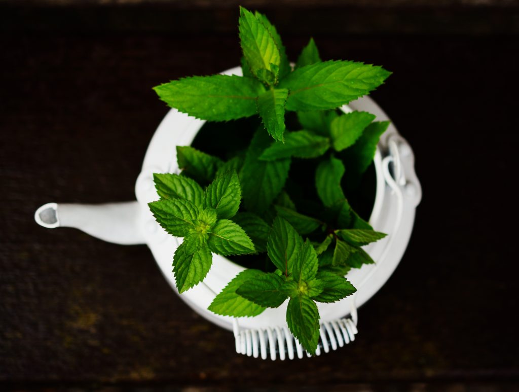 Top-view of a white bowl filled with fresh peppermint leaves.